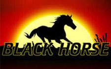 Игровой автомат Black Horse