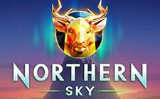 Игровой автомат Northern Sky